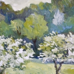 Almond_trees_in_spring1.jpg